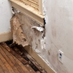 Water Damage In Drywall