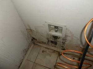 water damage, damage restoration, restoration provider, mold removal,
