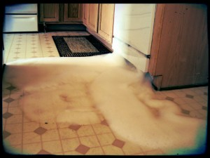 What to do when your dishwasher overflows.