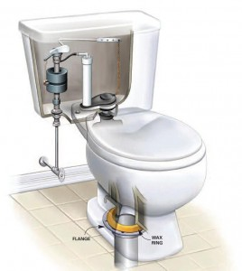 A leaking toilet can cause water damage to your home.