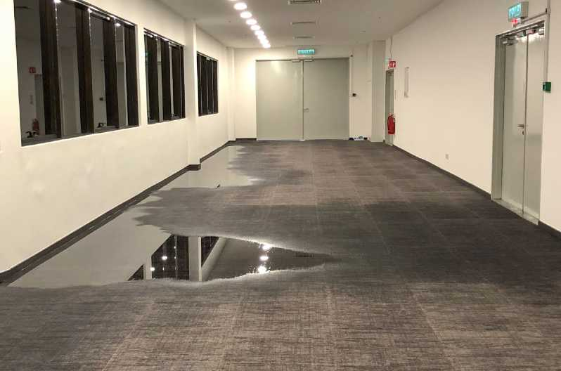 How To Dry Wet Carpet Fast Get, Get Water Out Of Basement Carpet
