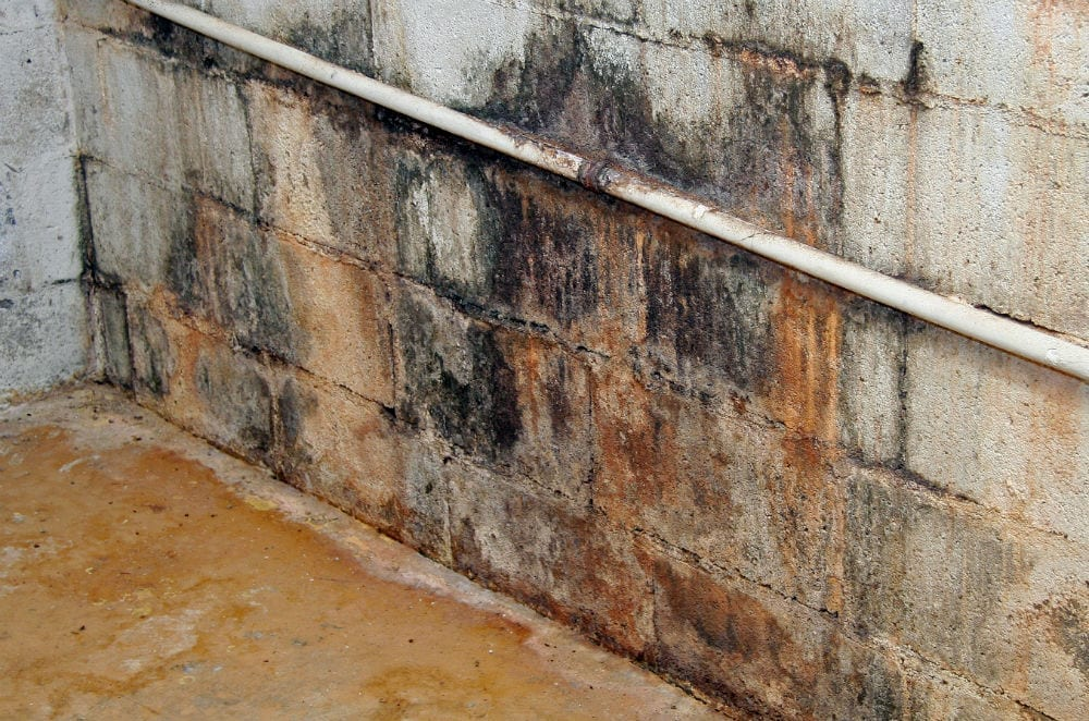 Basement Water Damage: Water damage to a foundation after a sewage backup.