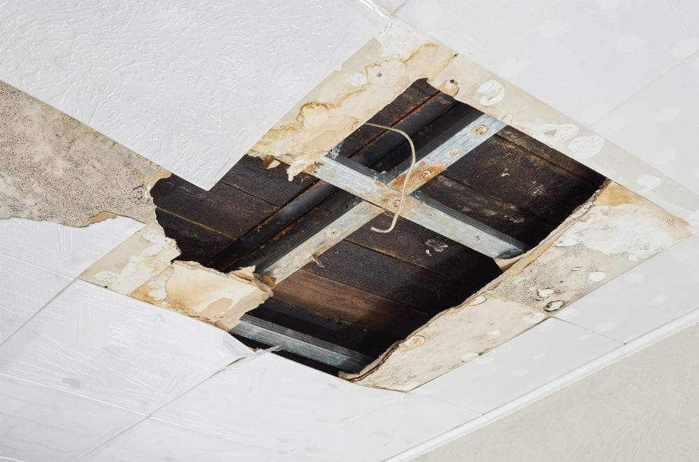 Ceiling Water Damage From A Leak? Here's What To Do In 5 Steps