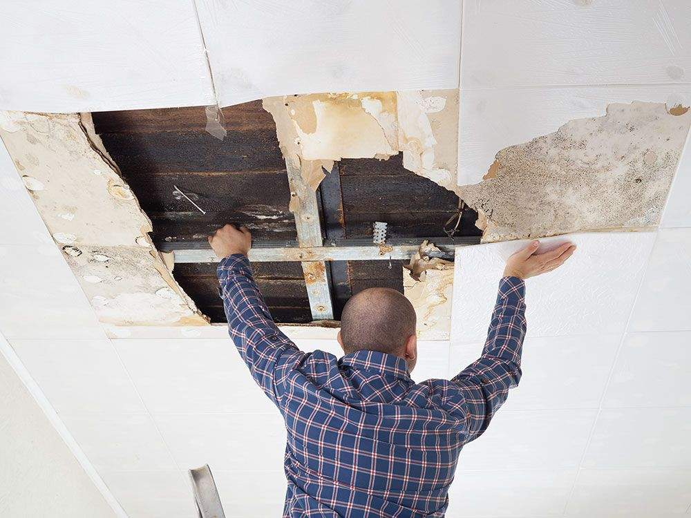 contractor fixes water damage in Spring Glen, PA