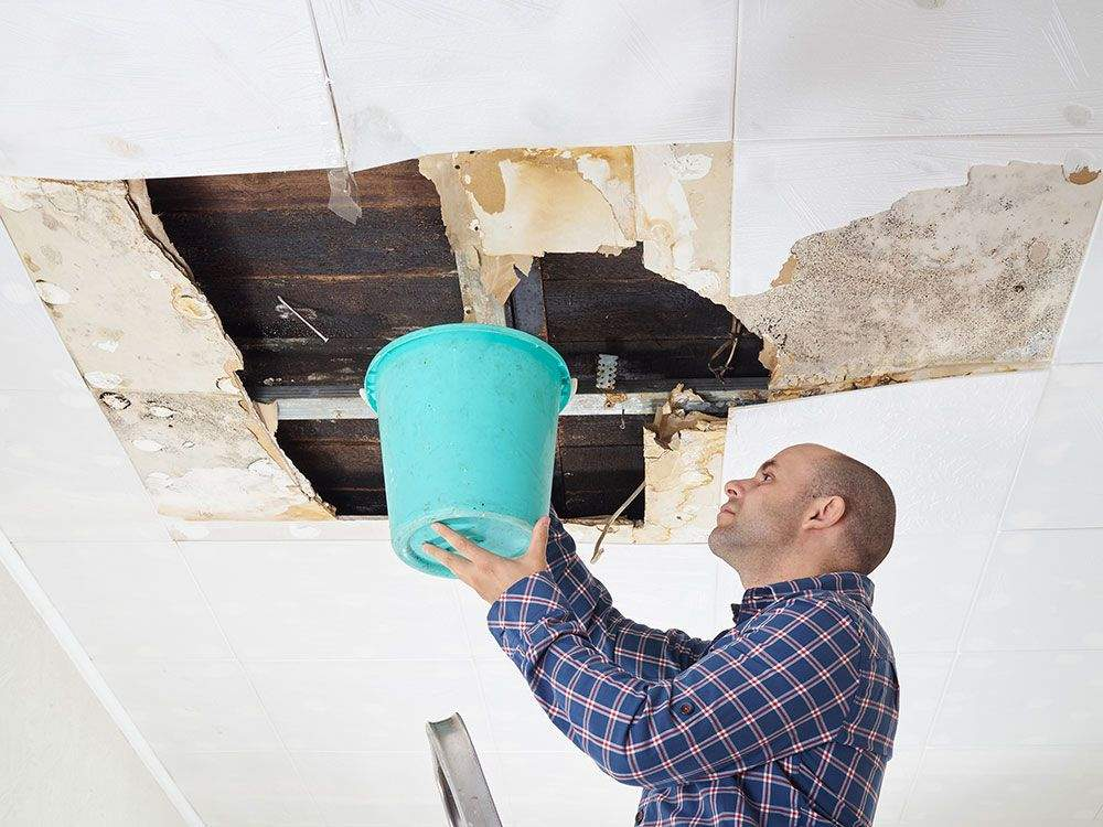 water damage repairman in Haukanier, TX
